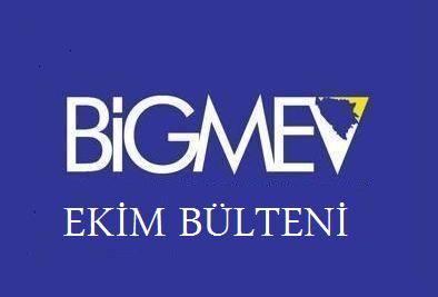 Bosna Hersek ile İlişkileri Geliştirme Merkezi Vakfı